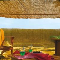 Ombreggiante economica Arella in bamboo naturale